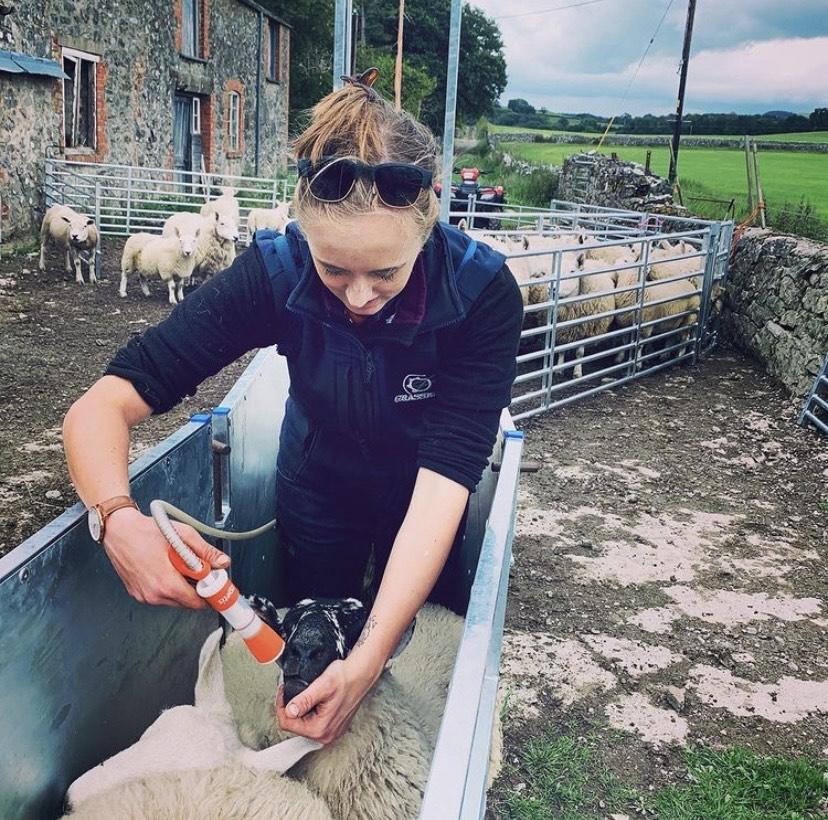 ffi_on_farming2